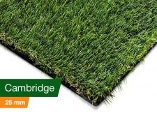 Rasenteppich | Comfort Class | Cambridge | Gewicht: 1500 g/m²