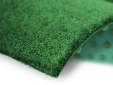 Teppichrasen