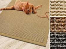 Sisal-Katzenteppich mit Bordüre | 3 Farben